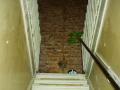 vijverhof-part-verbouwing-3